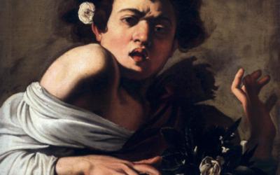 Caravaggio nel mondo: Ragazzo morso da un ramarro